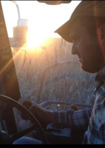 Andrew harvesting.